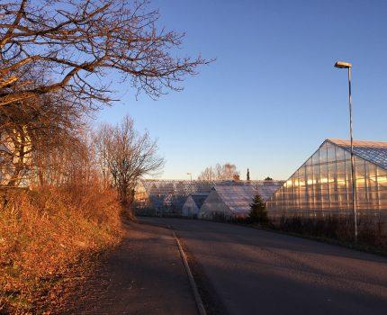 Reguleringsplan for Ekeberg gartneri er ute til offentlig ettersyn